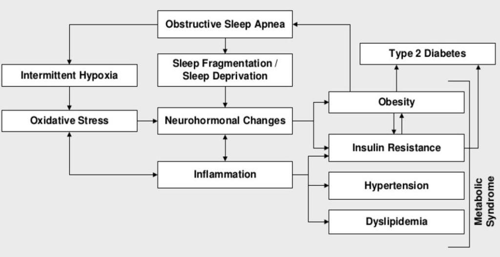 apnea and diabetes